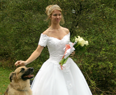 Bride with Wedding Dog