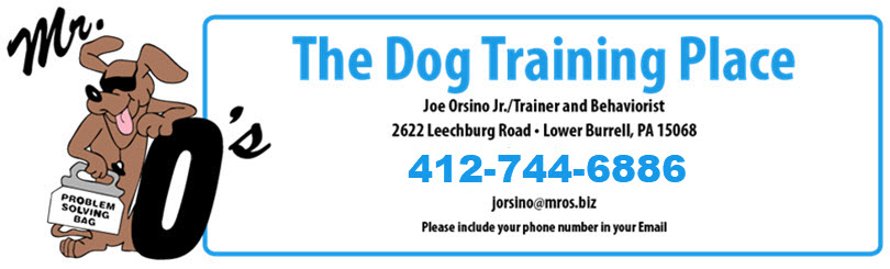 Dog Training Oakmont, New Kensington, Tarentum, Natrona Heights, Cheswick, Harmarville, Fox Chapel, Blawnox, Freeport, Waterfront, Etna, Sharpsburg, Pittsburgh, Monroeville, Lower Burrell, Swissvale, Edgewood, Highland Park, Point Breeze, Penn Circle, Shadyside, Squirrel Hill, Oakland, Verona, Garden City, Kittanning, Ford City, Delmont, Irwin, North Huntingdon, North Versailles, Turtle Creek